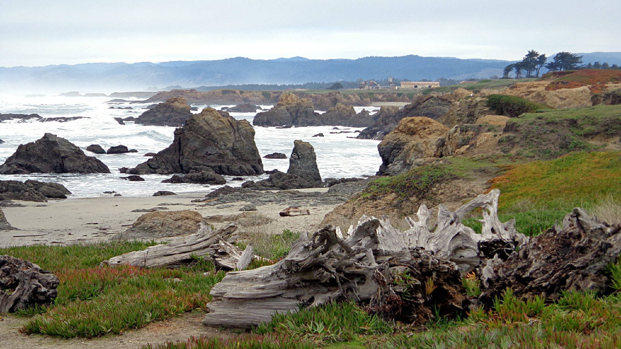 Beach by Fort Bragg